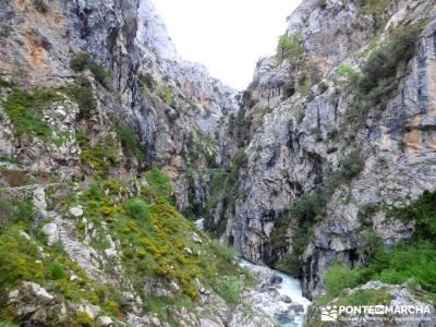 Ruta del Cares - Garganta Divina - Parque Nacional de los Picos de Europa;viajes senderismo